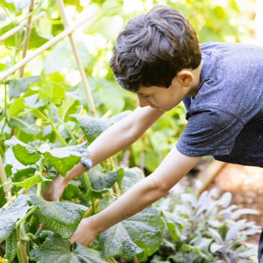 Get Inspired by these 9 Backyard Ideas for Kids The Family Will Love